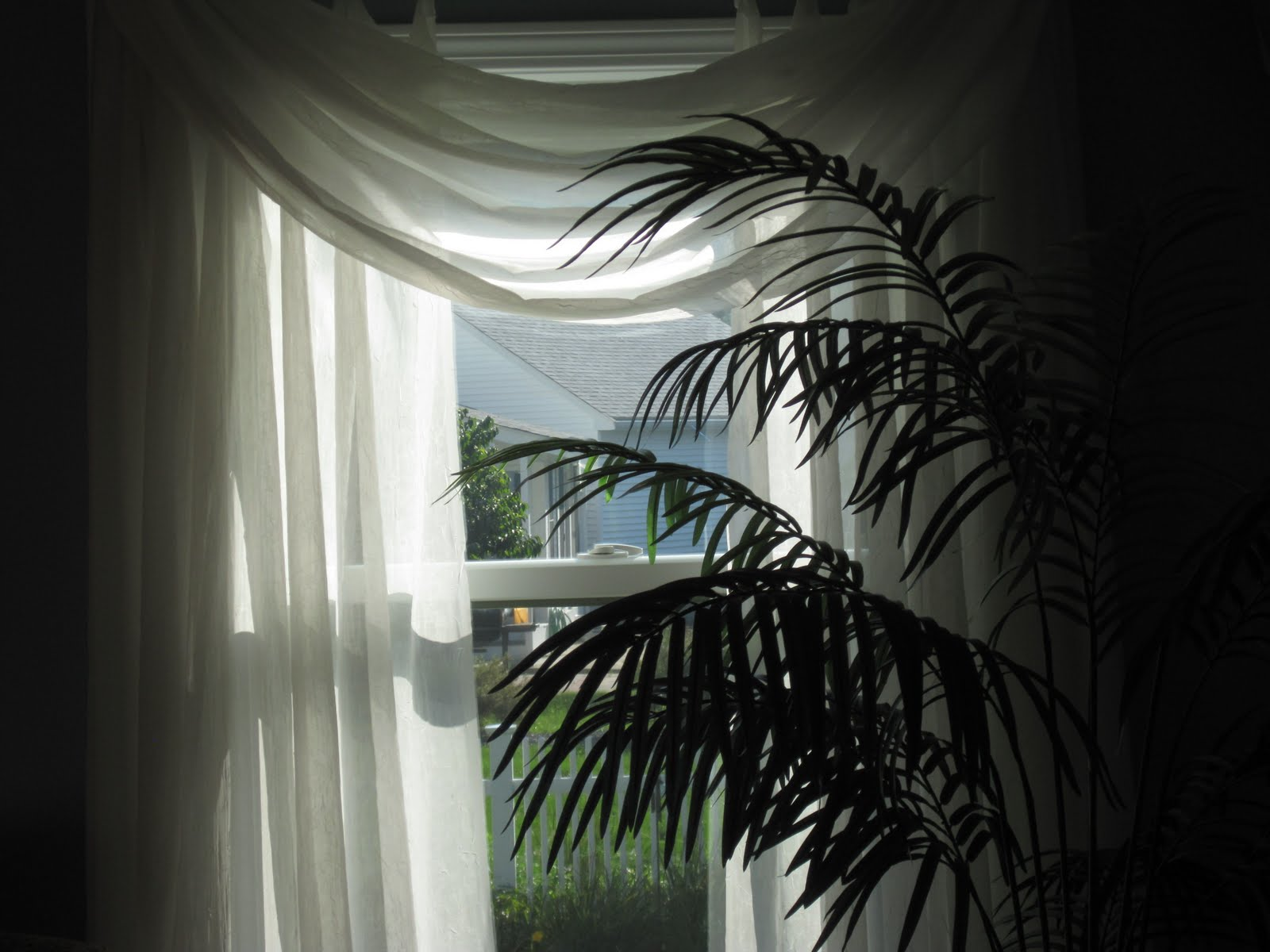 Open window with curtains blowing - Windows Of The Mansion Are Open And The Billowy Curtains Are Blowing