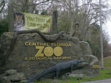Central Florida Zoo And Botanical Gardens Orlando Florida Sanford Central Florida Zoo And