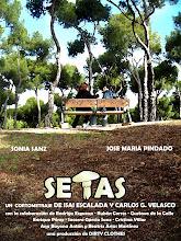 SETAS (2009)