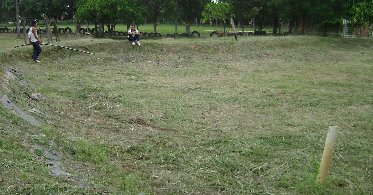 Piscicultura 2010 estanques de presa for Estanques para piscicultura