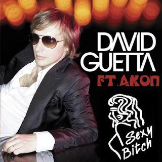 David guetta feat akon sexy chick download