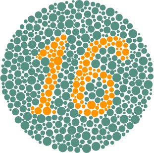 ishihara color blindness plate