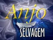 http://2.bp.blogspot.com/_s5ss7lvBXdo/SeIY_dQwV8I/AAAAAAAADD0/maJCUpVCPOA/s200/178%5B1%5D.jpg