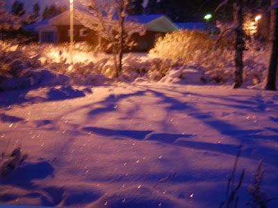 Takapihan talvi 31.12.2009