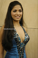 Parvathy Omanakuttan Photo Shoot