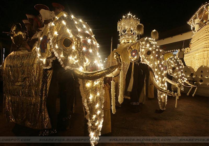 Esala perahera festival