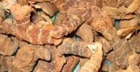 Plantes aromatiques, graines, noix, légumes, poissons, épices ... dans la Cuisine Marocaine 32087160