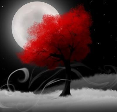 buona notte dans immagini buon...notte, giorno albero+rosso