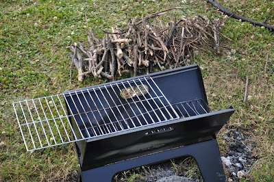 Delicieux A REVIEW OF THE X GRILL PORTABLE BARBEQUE
