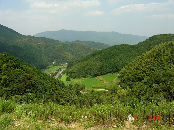 Beautiful Japanese Valley