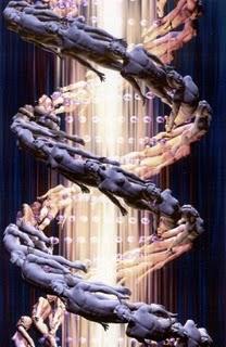 DNS LÁNC