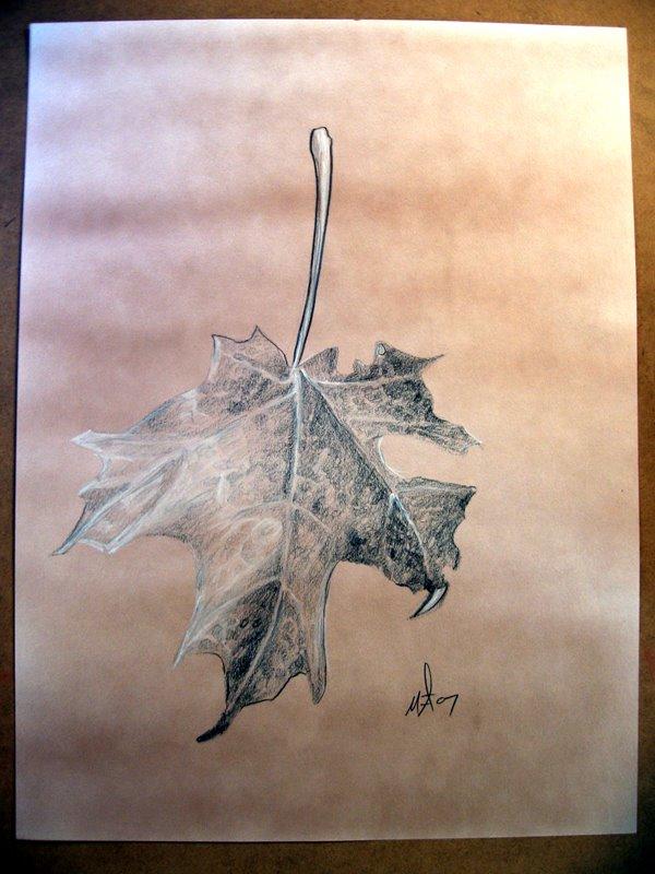 [leaves3]