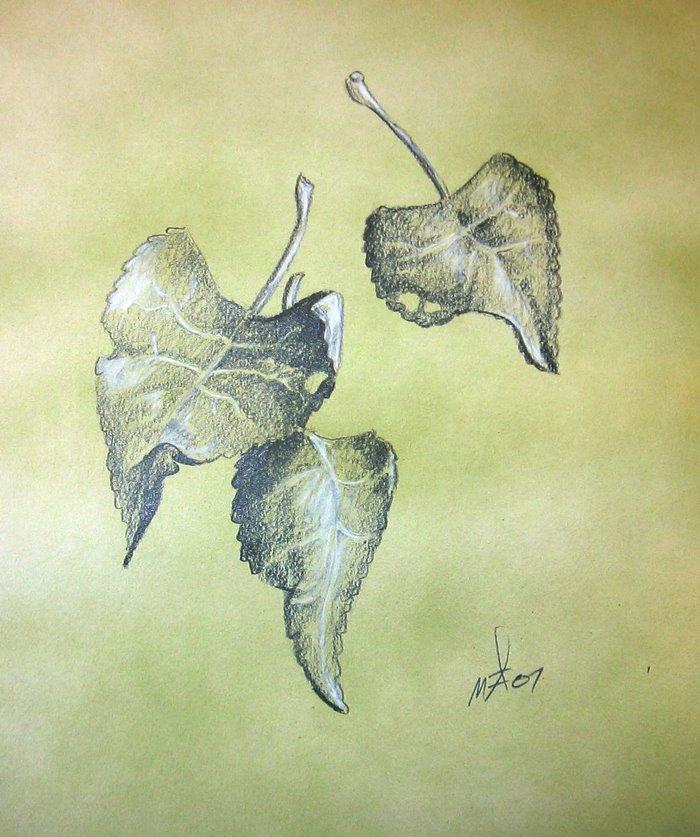 [leaves1]