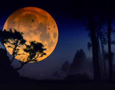 nature_photography_wallpaper_full_moon_photography