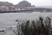 Café Portugal - PASSEIO DE JORNALISTAS nos Açores - Lajes do Pico - Lajes do Pico