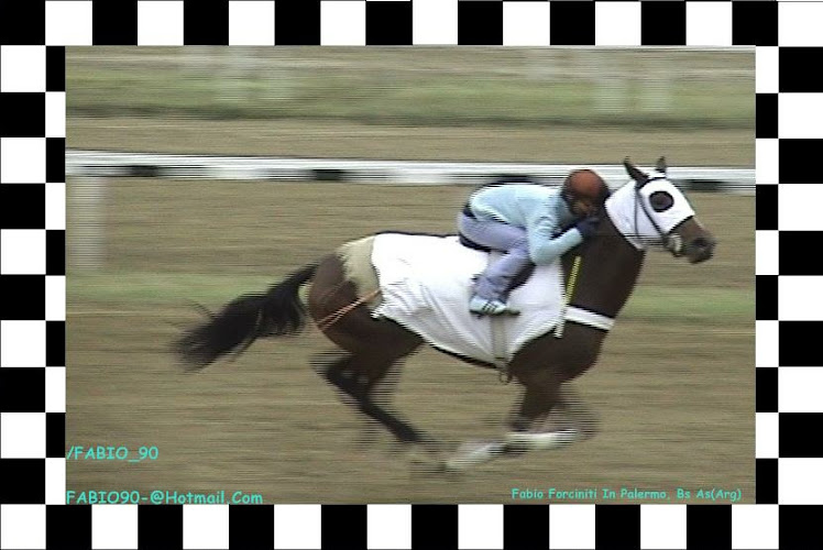 racing palermo turf