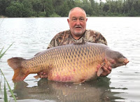 world record common carp teillatts