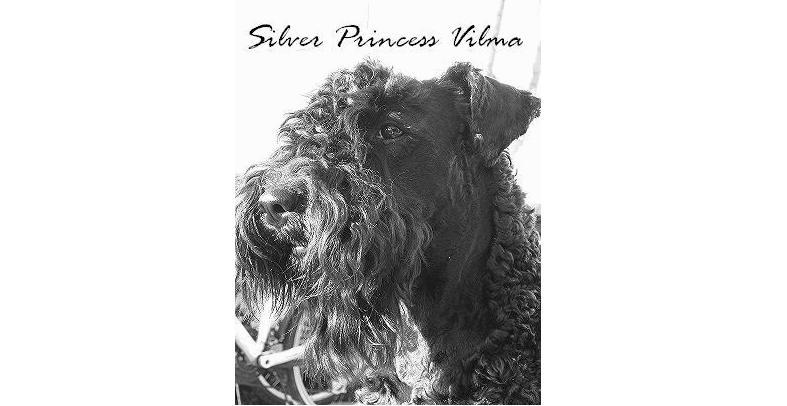 Silver Princess Vilma