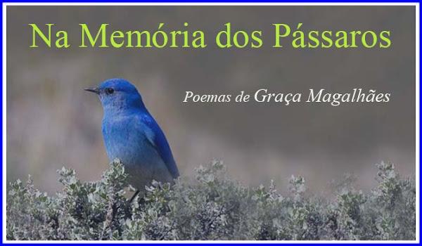 Na Memória dos Pássaros