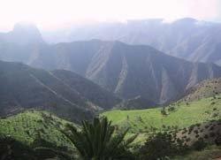 El valle verde