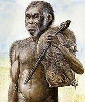 manusia_purba_Meganthropus_Palaeojavanicus