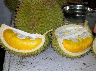 gabar_buah_durian_montong
