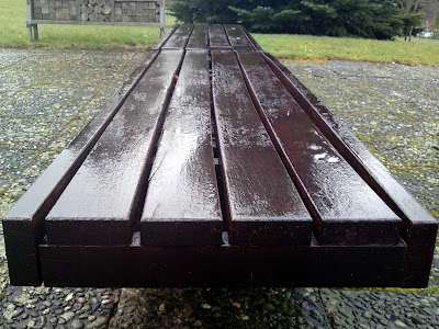 bench,  rain