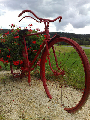 flowers, french village, red bicycle