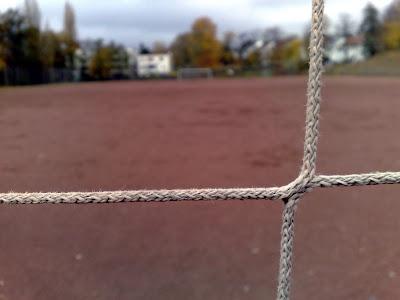 goal, net