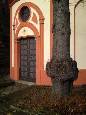 door,  tree
