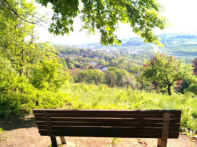 bench, saar