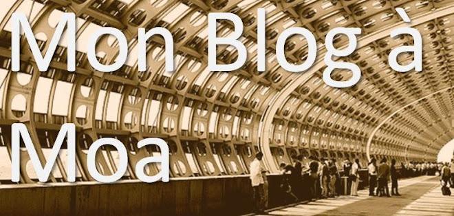 Blog a moa