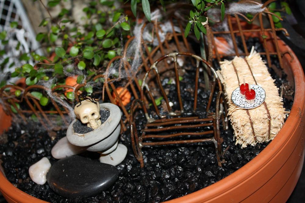 The Pure Gardener Inc Fall Halloween Miniature Garden