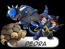 ---Tipos De Pokemons----- Pedra
