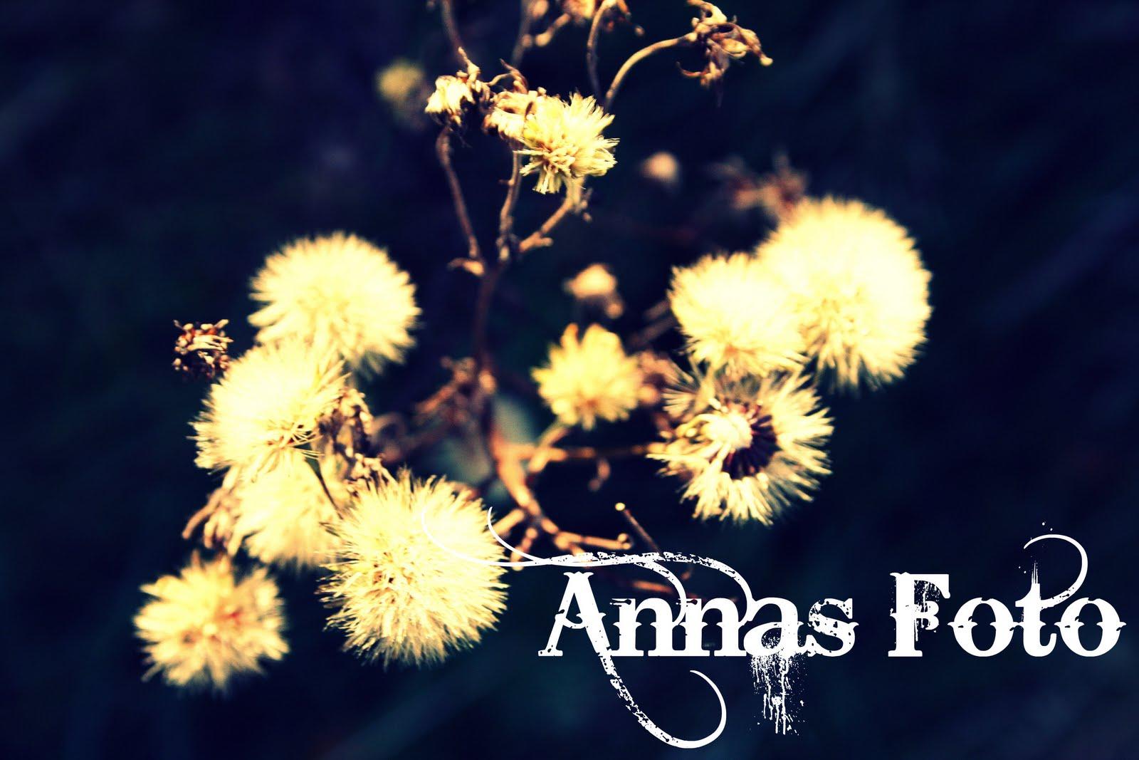 Annas foto