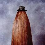 Maior cabelo do mundo
