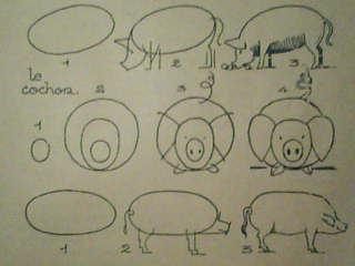 Dessins astuces pour debutants comment dessiner un cochon - Cochon a dessiner ...
