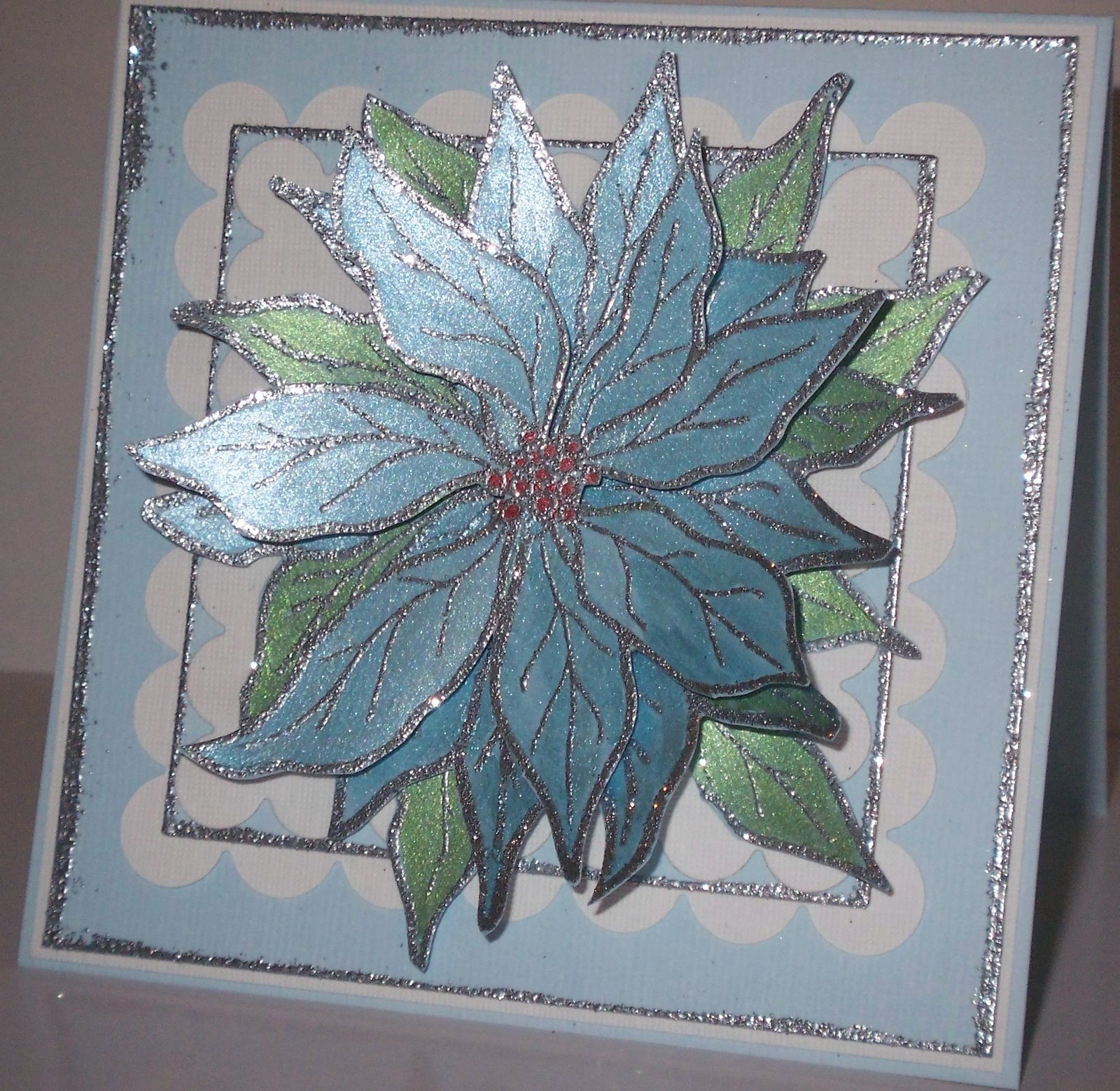 [Blue+Poinsettia]