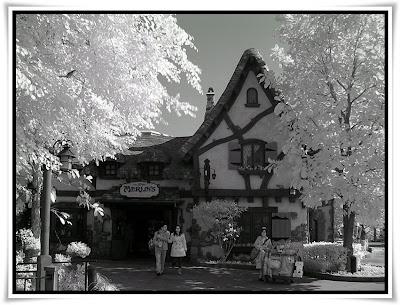 紅外線@迪士尼樂園