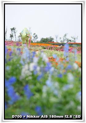 東部華僑城, 濕地花園