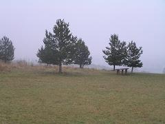 Lyth Hill