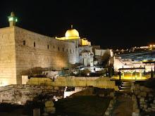 VISITA A ISRAEL