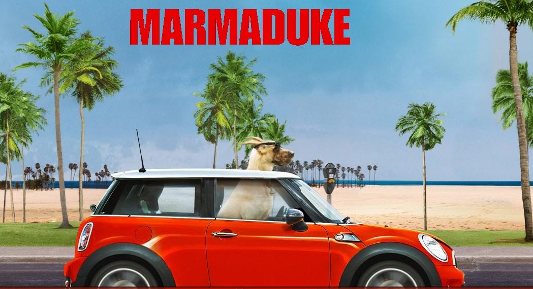 Marmaduke 2010  Rotten Tomatoes