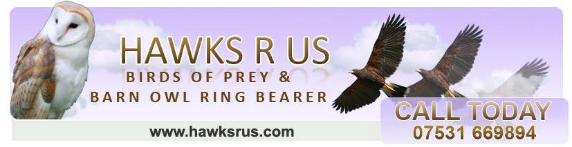 Hawks R Us.com