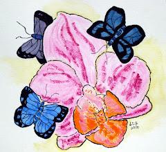 Orchid & Butterflies