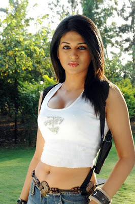 shradha das hot exposing breast and navel in aarya 2 arya 2 with allu arjun