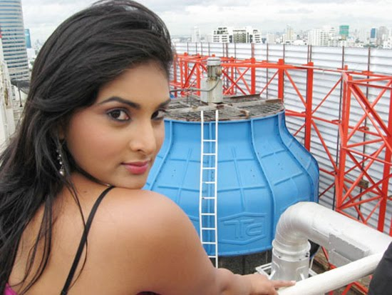 hot kannada tamil actress divya or ramya hot show pics-beautyceleb.blogspot.com