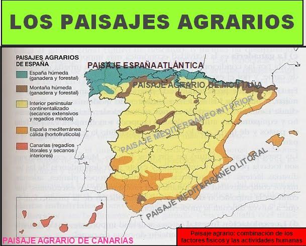 external image Paisajes+agrarios+de+Espa%C3%B1a.bmp