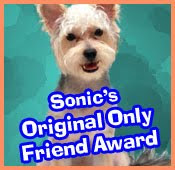 Thanks Sonic!