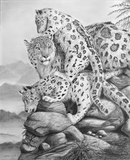 snow leopard mother and cubs charcoal drawing